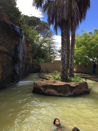 Caledon Hotel, Spa, Casino: Spring break
