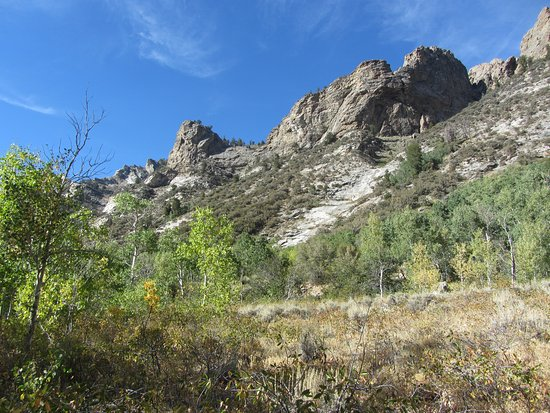 Elko, NV: View of avalanche chute along canyon changing trail.