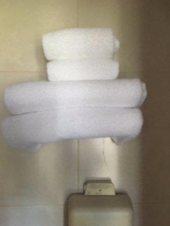 Prince Hotel: Towels