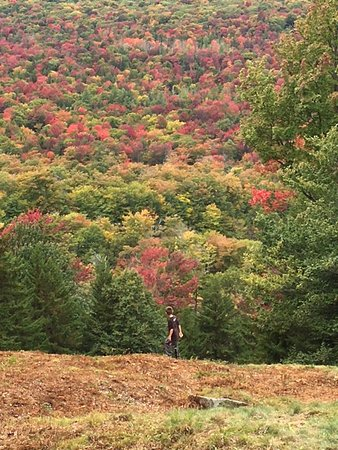 Pine Knoll Lodge & Cabins Inc: Fall foliage Macauley Mtn.