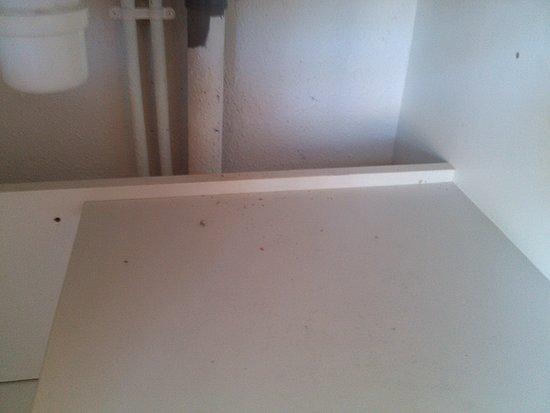 Saint-Pons-de-Thomieres, Francia: En dessous du lavabo, c'est vraiment sale.