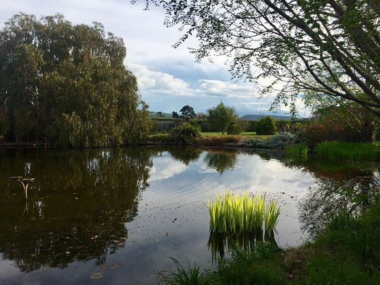 Havelock North, Nya Zeeland: St Andrews Escape