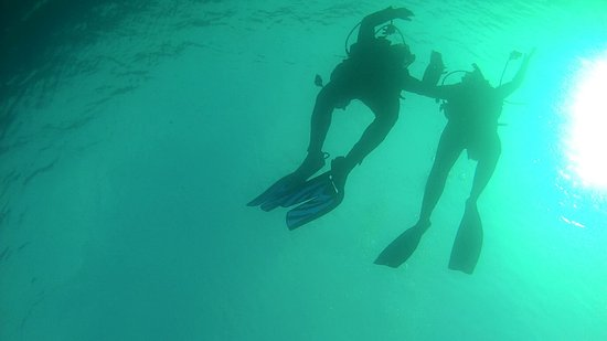 Orizzonti blu diving ischia all you need to know - Dive center blu ...