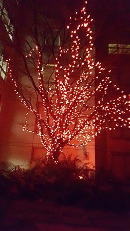 Opus Hotel: Cool Courtyard
