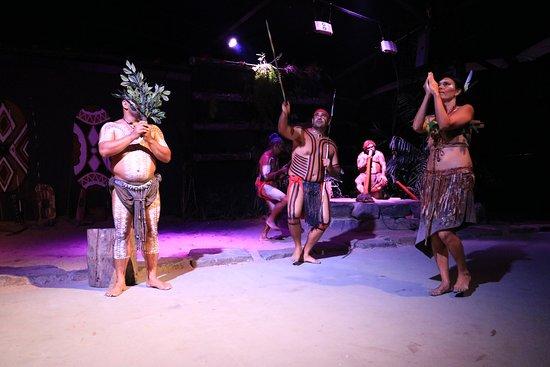 Caravonica, Avustralya: Dance show-Bee dance
