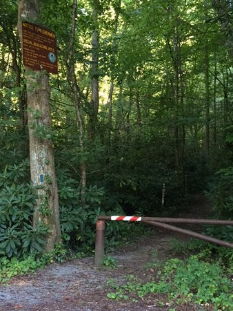 Hampton, TN: Laurel Fork Trailhead.