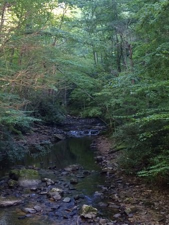 Hampton, Τενεσί: View along Laurel Fork trail.