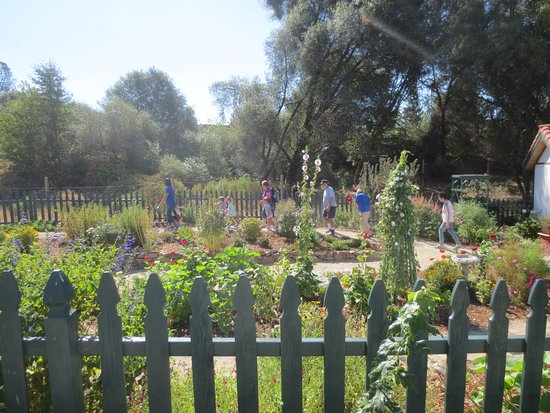 Placerville, CA: Cottage garden