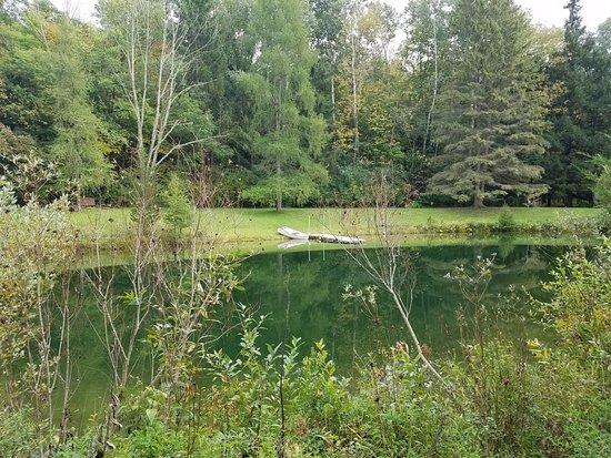 Cold Spring Inn : the pond