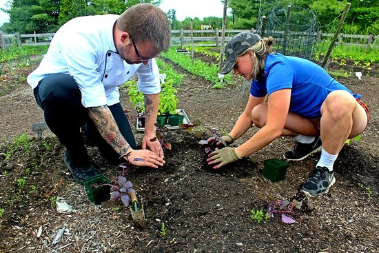 The Essex, Vermont's Culinary Resort & Spa: Organic Chef's Garden