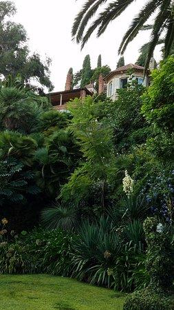 Villa della Pergola: garden with villa in background.