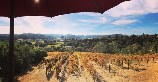 Wine Country Journeys LLC: photo1.jpg