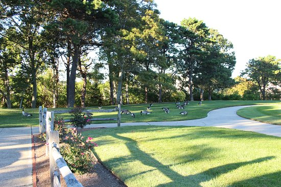 John F. Kennedy Memorial: Park View