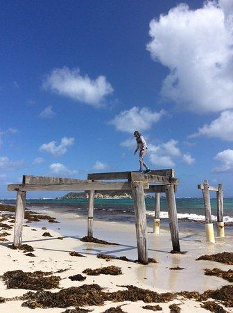 Hamelin Bay, Australien: Fun at the beach!
