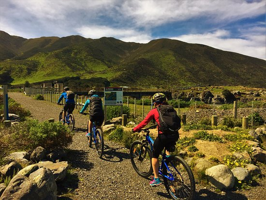 Lower Hutt, New Zealand: Section 4 - The Wild Coast