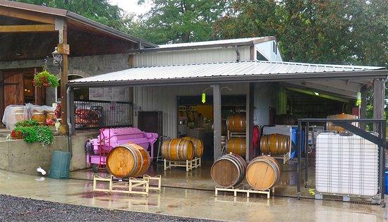 Salem, OR: Vineyard / Winery (?)
