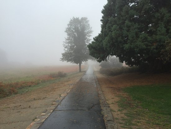 Palomar Mountain, Kalifornia: It was a bit chilly and misty