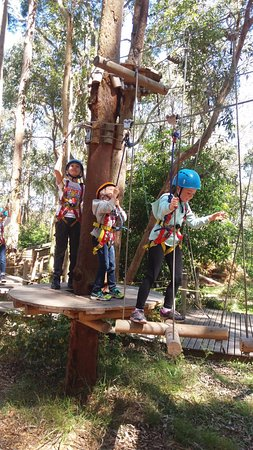 TreeTop Adventure Park Newcastle: 1st level for 3-9yr olds (White) is a great starter to build confidence