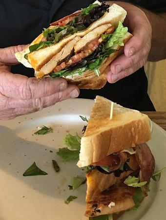 Blackheath, ออสเตรเลีย: Club Sandwich so big it was difficult to hold onto!