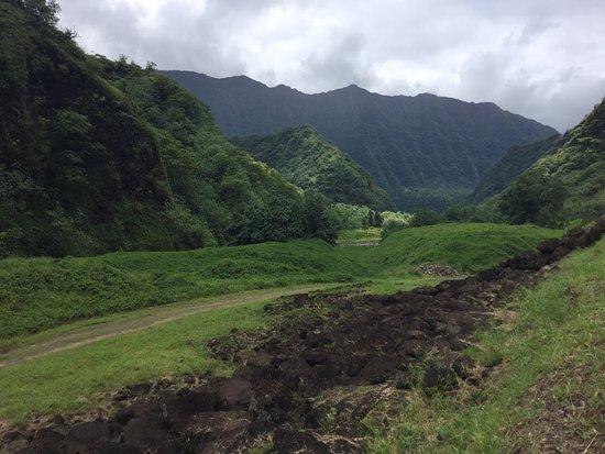 Teiva Tahiti Discovery Book Tour