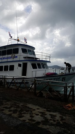 Dive Asia - Day Trips and PADI Courses: C360_2016-10-09-09-24-42-476_large.jpg