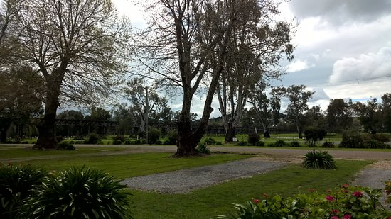Gundagai, Australia: Van Sites