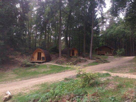 Velp, Ολλανδία: Buitenplaats Beekhuizen