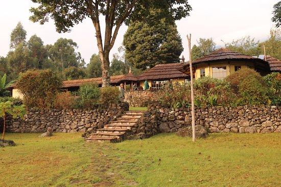 Mount Gahinga Lodge Picture