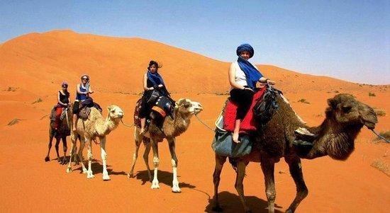 Morocco Travel Adventure Tours