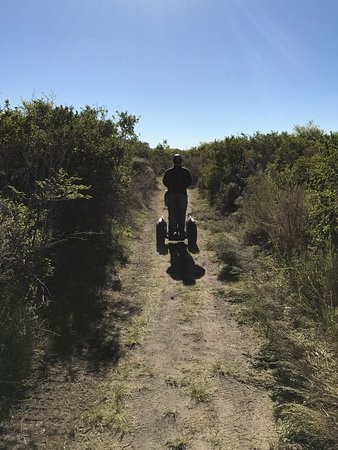 Уилдернесс, Южная Африка: photo0.jpg