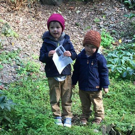 Marwood Hill Gardens: photo1.jpg