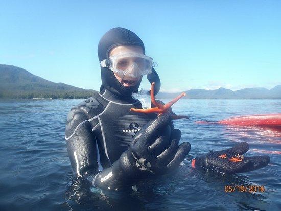 Snorkel Alaska: Diver team brings starfish up for close encounter :-)