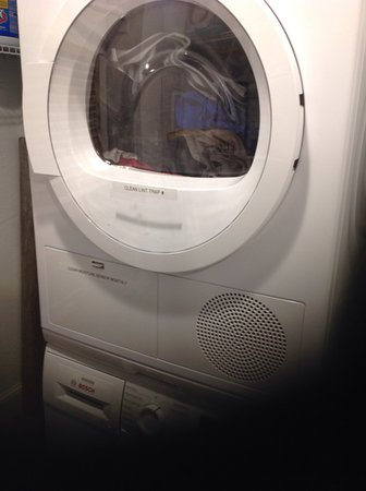 Sea Winds of Marco : Washer and dryer in unit