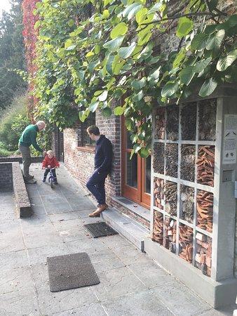Beernem, Belçika: Mooie en gezellige herfstwandeling met de familie op een zonnige zaterdag in oktober'16