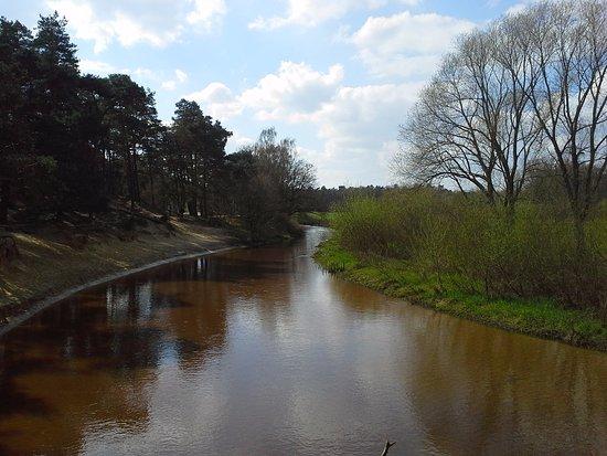 Prachtige meanderende riviertje de Dinkel in het natuurgebied Lutterzand, De Lutte, Twente (Ov)