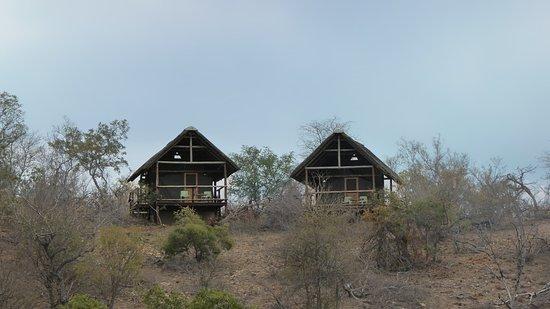 Foto de Balule Nature Reserve