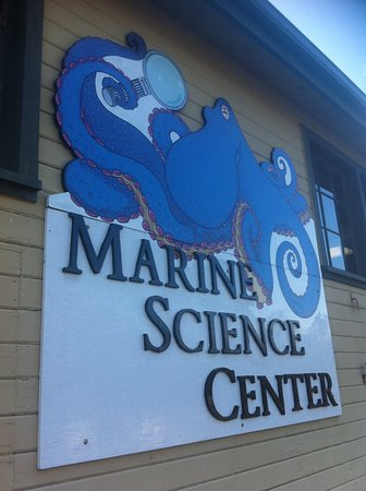 Port Townsend Marine Science Center : Signage