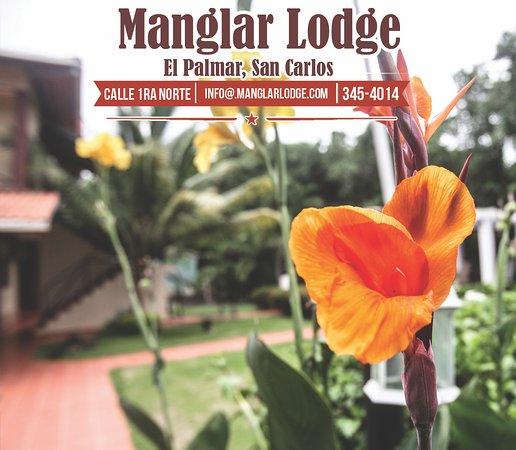 Manglar Lodge Image