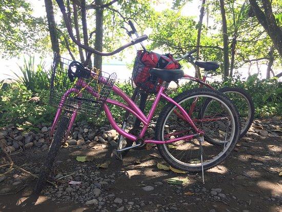 Centro Turistico Brigitte: Bicis de alquiler