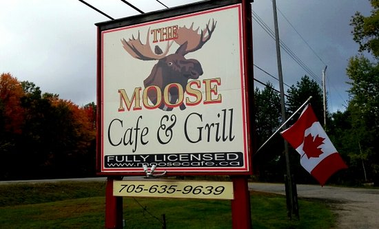 The Moose Cafe: Can't miss this place, Hwy 60