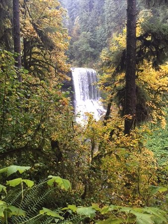 Sublimity, OR: Silver Falls State Park October 2016