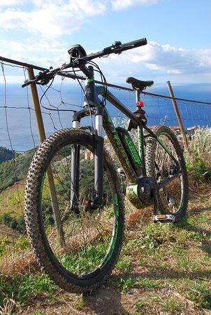 La Spezia, Italien: A Pako Bike, Atala E-MTB