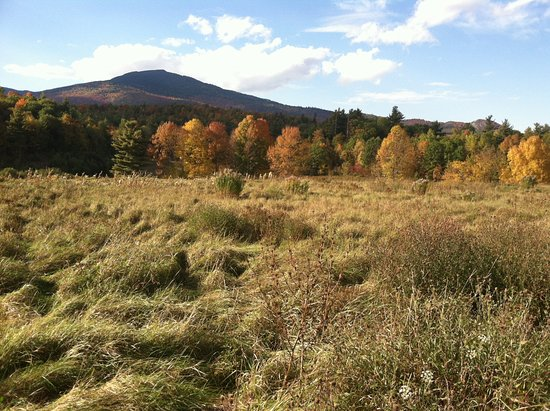 Keene, NY: View of Sentinel Mountain from the Meadow Trails