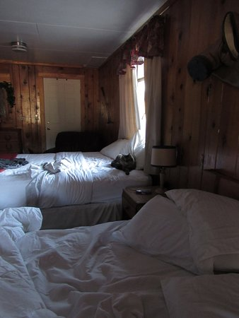 Spruce Lodge: Two crisp white beds for just me and the cat. Warm cabin feeling,