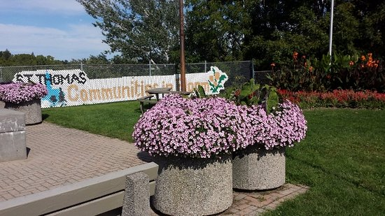 Saint Thomas, Kanada: flowers