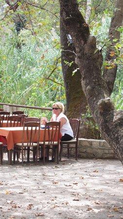 Drakiana Taverna: enjoying the shade