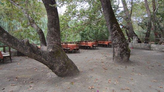 Drakiana Taverna: beautiful setting