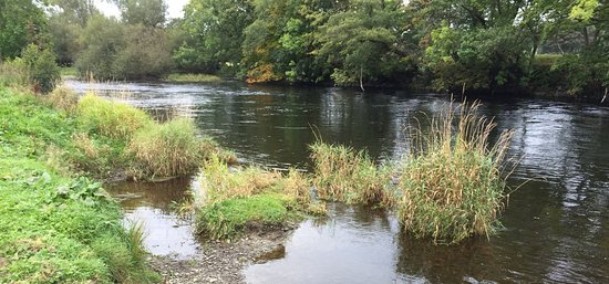 Corwen, UK: Nearby river - 5 mins walk away
