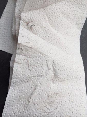 Hotel Weisser Schwan Darmstadt: Badezimmer: Sauberkeit eine Katastrophe! Haare in Mengen von mindestens drei Vorgängern!