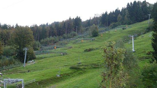 Alpsee Bergwelt: Rodelbahn